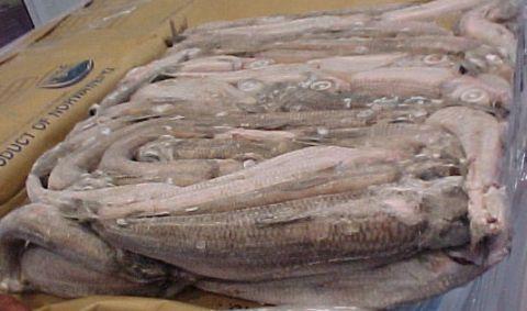 Россельхознадзор вернул в Белоруссию около 20 тонн рыбы из Вьетнама и Китая