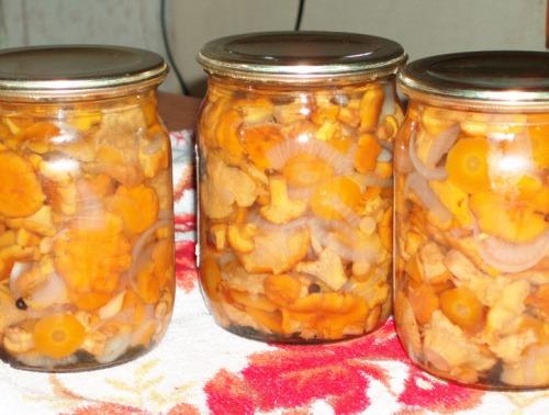 Грибы лисички рецепты приготовления с фото