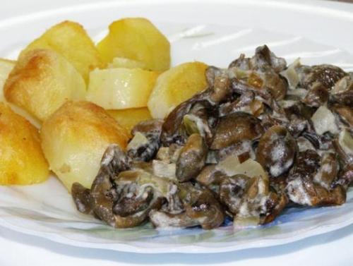 правильное питание грибы