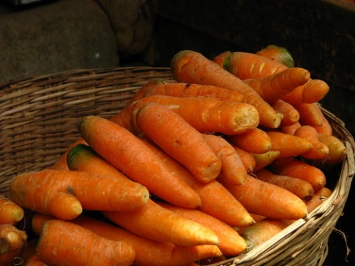 storage_of_carrot